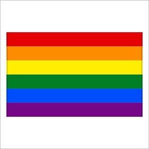 Gay Pride Rainbow Flag LGBT  Decal / Sticker