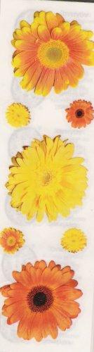 Orange and Yellow Daisys