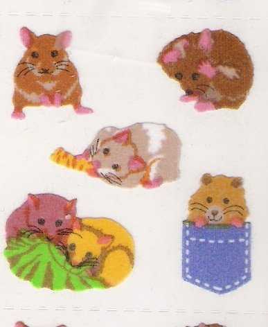 Fuzzy Hampsters
