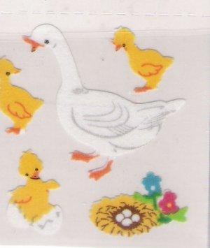 Fuzzy Ducks with little ducklings