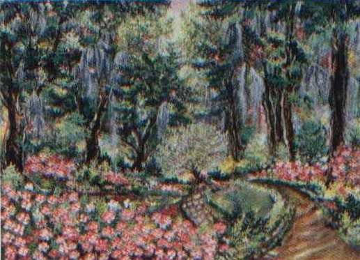Edisto Garden