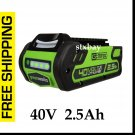 GreenWorks 2901319 G-MAX 40V Volt 2.5 Ah Battery Lithium Ion for Lawn and Garden Tools NEW