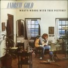 Andrew Gold - What's Wrong With This Picture LP Record