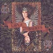 Love Hurts by Cher CD 1991