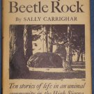 ONE DAY ON BEETLE ROCK Sally Carrighar Henry B Kane High Sierra stories for kids