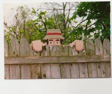 Handmade Custom Wooden Functional Mr Wilson Rail Pet or Fence Sitter