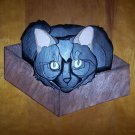 Handmade Custom painted wooden Cat in a Box
