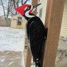 Handmade custom woodworking 3D Giant Pileated Woodpecker