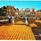 Alkmaar Netherlands Postcard Holland Kaasmarkt Market Pumpkins