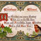 Christmas Chimes Tuck Postcard Clifton Bingham Verse Mistletoe Bird