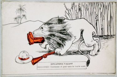 Situations Wanted Lion Eating Man Comic Postcard