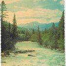 Jasper Alberta Postcard Stream in Jasper Park RCMP Photo Scalloped Edge