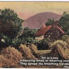 Art Postcard Harvesting Summer Thomson Glazette Series 8007-3 England