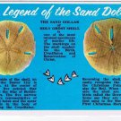 Sand Dollar Laminated Postcard Legend Holy Ghost Shell
