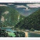 Watkins Glen New York Postcard Moonlight on the Delaware Curteich 28828 1911