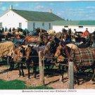 Ontario Laminated Postcard RPPC Mennonite Families Meet Near Kitchener