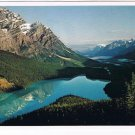 Alberta Laminated Postcard RPPC Peyto Lake Banff National Park