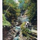 Watkins Glen New York Postcard Shadow Gorge Curteich R-91741 1922