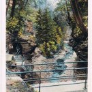 Watkins Glen New York Postcard Poet's Dream Curteich A-52140 1913