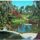 St Petersburg Florida Postcard Cypress Gardens Palms Banana Azaleas