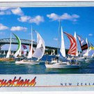 Auckland New Zealand Postcard Racing Yachts Harbour Bridge