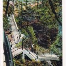 Watkins Glen New York Postcard Stairway to Point Lookout Curteich A-52124 1913
