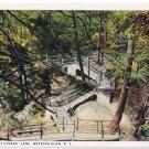 Watkins Glen New York Postcard Stairway at Lover's Lane Curteich A-52144 1913