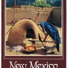 New Mexico  Postcard Taos Indian Woman Baking Bread Outdoor Oven