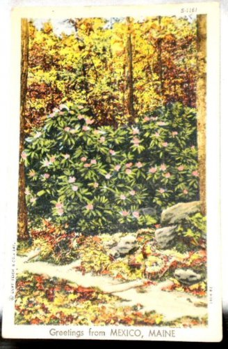 Curt Teich Linen Greetings Mexico Maine Postcard 1947