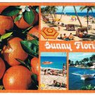 Sunny Florida Oranges Beaches Boats Tanning Postcard