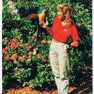 Florida Postcard Ocean World Exotic Bird Show Parrot