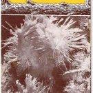 Vintage Travel Brochure 1960s Front Royal Virginia Skyline Caverns