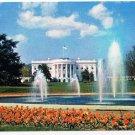 Washington DC Postcard White House Grounds Fountain Tulips