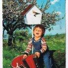 Holland Netherlands Postcard Boy Hat Accordion Birdhouse Tree