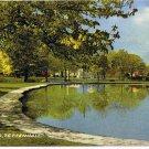 England Postcard Tettenhall The Pond