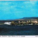Nova Scotia Postcard Margaree Harbour Cape Breton