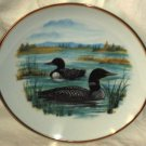 """Sunrise Canada Loon Plate Two Loons Lake Reeds Gold Rim 8 1/2"""""""