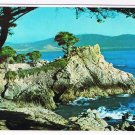 California Postcard Midway Point Carmel Bay