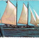 Maine Postcard Camden Schooner Stephen Taber