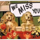 We Miss You Postcard Dogs Flowers Balcony