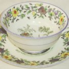 Cauldon China Cup & Saucer Urn Peacock Bird Cathedral Yellow Purple Flowers 5295