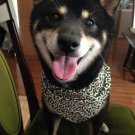 Dog KARAKUSA Bandana Collar Green M size (Dog Collar + Bandana)