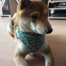 "Dog Bandana for Japanese KARAKUSA ""Small-patterned Green"""