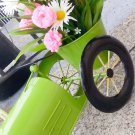 Mixed Daisy & Hydrangea Fern Planter