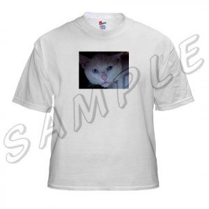 White Tee-Shirt