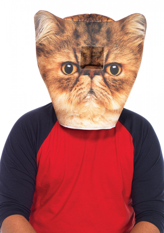 Foam Angry Cat