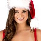 Sku C120 Fur Trimmed Hat