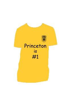 Princeton House Shirt