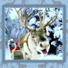 Happy Reindeer Christmas Card
