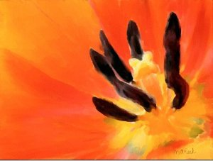 Flame Tulip Watercolor Print